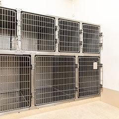 イヌ入院室